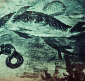 キプロスのグレコ岬に現れるという怪物 ~ アヤナパ・シー・モンスター