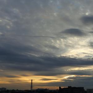 やっと朝日が見えた