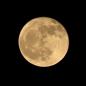 【夜空】今日は16夜