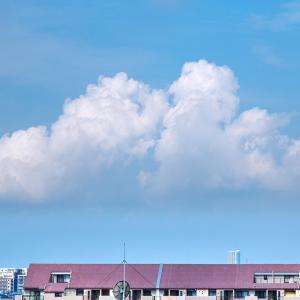 【空模様】午前の空【夏雲】