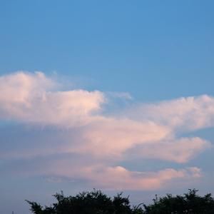 【空模様】今日の夕焼け?【サンセット】