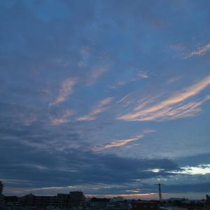 【空模様】今日の空【朝・夕、、まったくダメ】