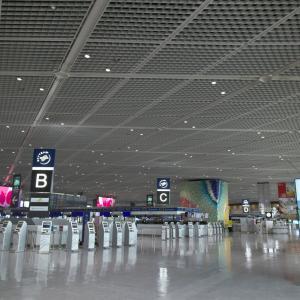 【スカイマーク】現在の成田空港の模様【北ウイングは】