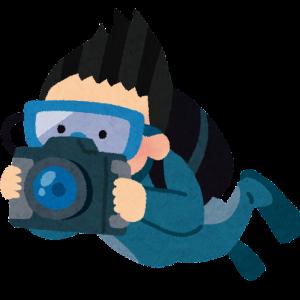 【サイパン】サイパンのダイビングインストラクターがお届けする現地最新情報【しぶりのダイビング動画 ウイングビーチ編】