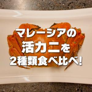 【食べ比べ】マレーシアのスーパーで上海蟹とマッドクラブを買ってみた!