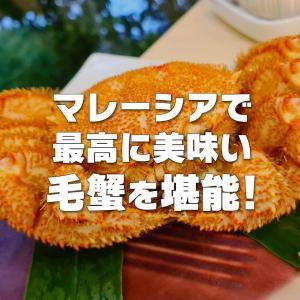 【Yoshifuku】マレーシア最高峰の和食屋さんで毛蟹を堪能!