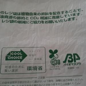 レジ袋が有料化で家のごみ袋はどうするか