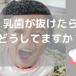 子供の乳歯が抜けたら、みなさんどうしてますか?