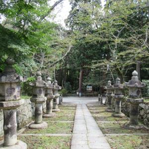 三井寺(みいでら)の特別参拝