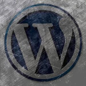WordPressの無料テーマ「Cocoon」で更に高速化する方法プラグインWP Fatest Cache