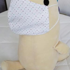 快適!日本の技術の賜物!高島ちぢみで夏マスクはいかがでしょうか?