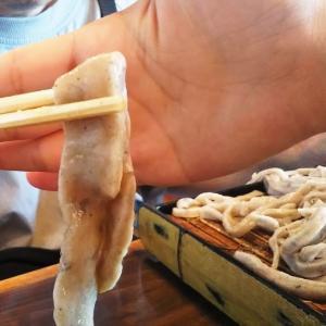 世にも太くて食べごたえのある絶品お蕎麦「一茶」in 埼玉