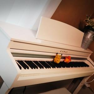 ピアノ「夜に駆ける」をアラフィフおばさんが頑張って弾いてみた(音源あり)