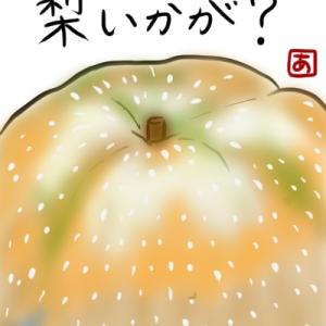 絵手紙 梨