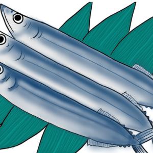 絵手紙 秋刀魚