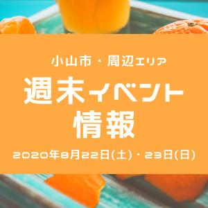 【8月22日・23日】週末イベント情報!渡良瀬遊水地のヨシ灯り・リサイクルやグルメイベントなど 2020年