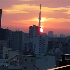 陽は登り、沈んでいく