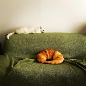 中古のソファーを綺麗にしたい