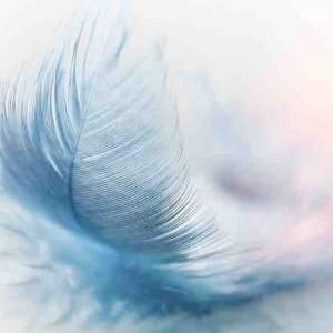 今日は、キンナンバー234白い魔法使い白い風音13の1日です。