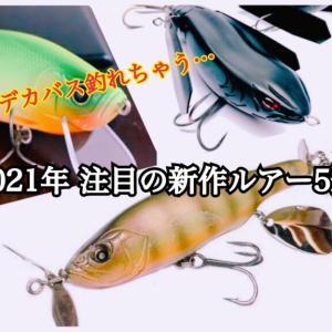 【2021年新作】入手困難必須?デカバス釣れそうな注目NEWルアー5選