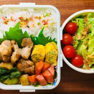 鶏肉と野菜の照り焼き弁当