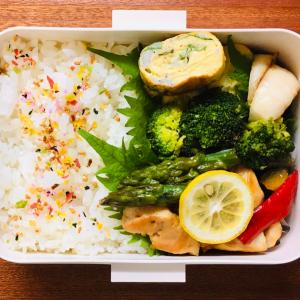 ササミと野菜のレモン照り焼き弁当&猫の歯周病