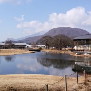 ★プードル達を連れて軽井沢 & こんにゃくパークに・・・。★