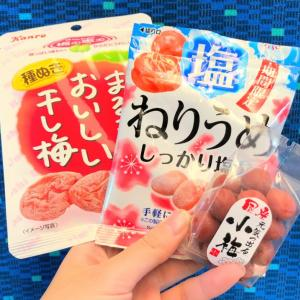 梅のお菓子種類別おすすめランキング!無性に食べたくなる梅お菓子はこれだ!
