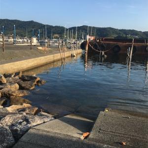 浜名湖へハゼ釣りに