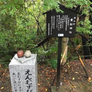柿田川公園 美しい湧水