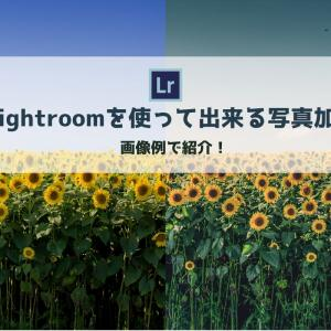 【Lightroom CC】を使ってできる写真加工「画像例と一緒に紹介」