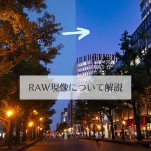 RAW現像ってなに?JPEGとの違いも解説【フォトレタッチ】