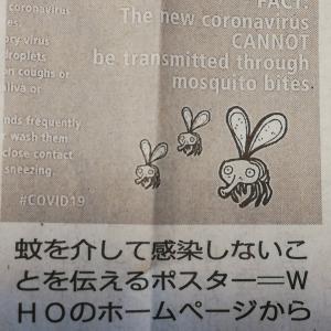 【コロナウイルス】蚊を通じて感染するの?