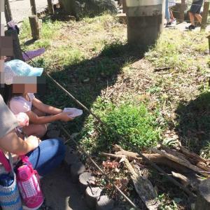 町田リス園は子供連れでも楽しめる?幼稚園児&小学生現地体験レポ