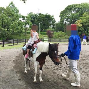 東京都内で子供が無料乗馬体験出来る施設「なぎさポニーランド」を紹介