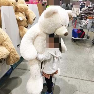 コストコのぬいぐるみ種類・価格一覧レポ 超巨大なクマのぬいぐるみが激安♪