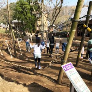 ふなばしアンデルセン公園のアスレチック幼稚園児・小学生体験レポ