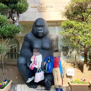 プール・スパ充実&客室が広いホテル。マホロバ・マインズ三浦家族体験ブログ