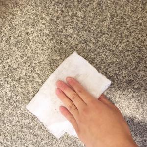 ポン子の毎日の掃除の仕方、見る?( ̄▽ ̄)