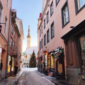 ヘルシンキからフェリーで日帰りエストニア・タリン旅行🇪🇪
