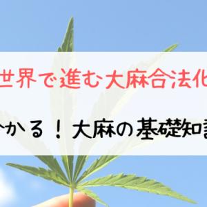 【世界で進む大麻合法化】分かる!大麻の基礎知識【麻・マリファナ】