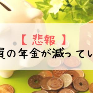 【悲報】公務員の年金が減っていた!【年金一元化とは?】