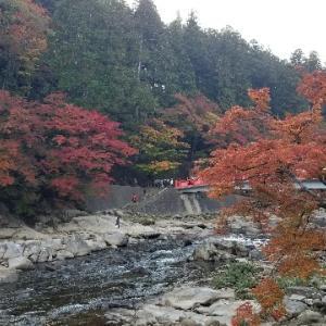 紅葉の名所 香嵐渓