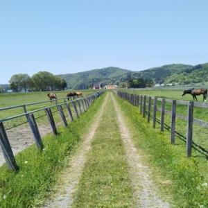 渡辺牧場を見学するには