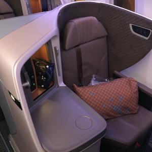 【シンガポール航空 B787-10 ビジネス】ANAマイルでビジネスに乗りまくる旅Leg4