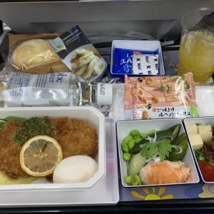 ANA フライングホヌA380 搭乗記 エコノミー〈NH182 成田=ホノルル〉
