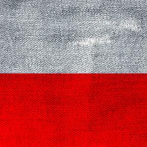 【ポーランドのワーホリ】ビザ申請~変更点6つを徹底解説~