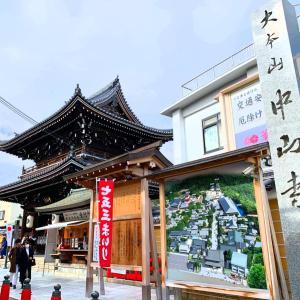 こんな五重塔見たことない‼️〜青龍で守られた中山寺〜