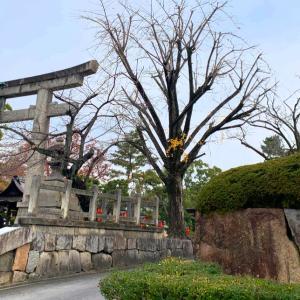 変化の運気をもらう吉方位旅 京都 〜豊国神社〜
