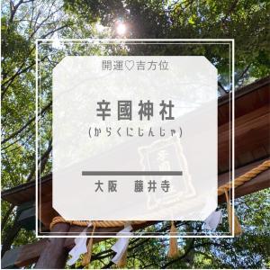 【辛國神社】大阪 藤井寺~健康の守護神 饒速日命~